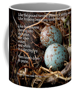 Birdsong From Inside The Egg Coffee Mug