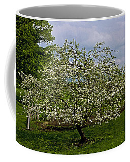 Coffee Mug featuring the painting Birth Of Apples by John Haldane