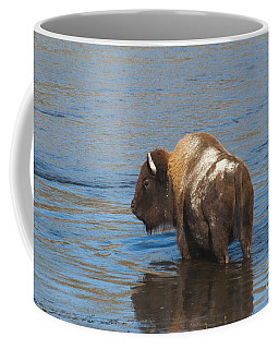 Bison Crossing River Coffee Mug