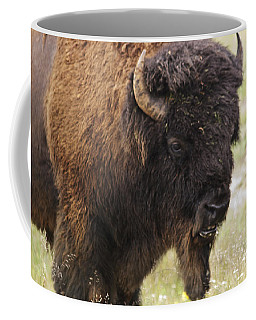 Coffee Mug featuring the photograph Bison From Yellowstone by Belinda Greb