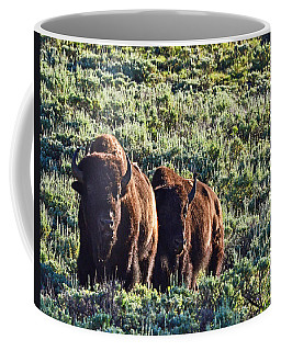 Bison Morning Coffee Mug