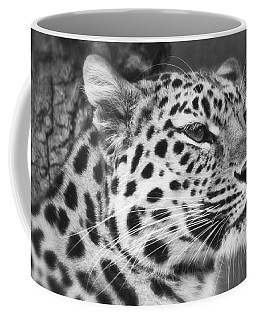 Black And White - Amur Leopard Portrait Coffee Mug