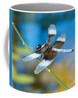 Coffee Mug featuring the photograph Black And White Dragonfly by Mae Wertz