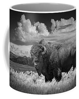 Black And White Photograph Of An American Buffalo Coffee Mug