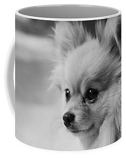 Black And White Portrait Of Pixie The Pomeranian Coffee Mug