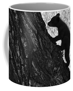Black Bear Cubs Climbing A Tree Coffee Mug