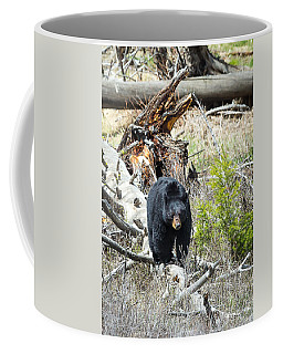 Coffee Mug featuring the photograph Black Bear by Michael Chatt