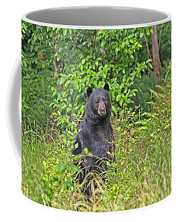 Coffee Mug featuring the photograph Black Bear Standing Up by Peggy Collins