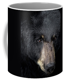 Black Bear Coffee Mug by TnBackroadsPhotos