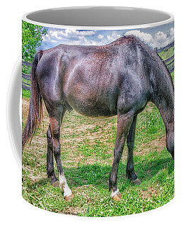 Coffee Mug featuring the photograph Black Beauty by Dennis Baswell