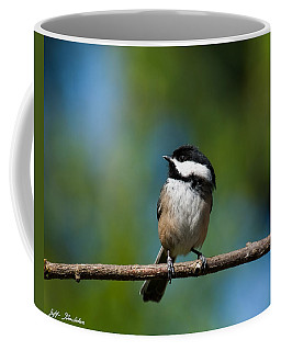 Black Capped Chickadee Perched On A Branch Coffee Mug by Jeff Goulden