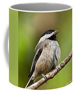 Black Capped Chickadee Singing Coffee Mug