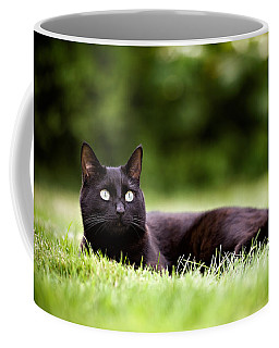 Black Cat Lying In Garden Coffee Mug