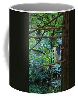 Black-crowned Night Heron Coffee Mug