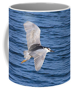 Black Crowned Night Heron In Flight Coffee Mug