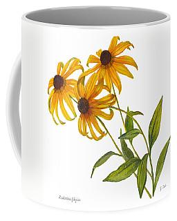 Black Eyed Susan - Rudbeckia Fulgida Coffee Mug