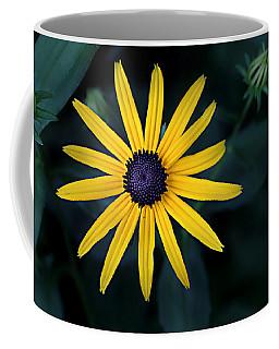 Black-eyed Susan Coffee Mug by William Tanneberger