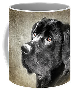 Black Lab Portrait Coffee Mug