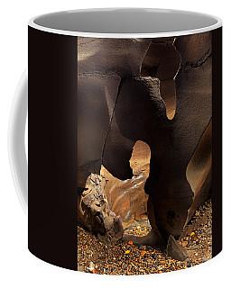 Coffee Mug featuring the photograph Black Magic Canyon Shape by Leland D Howard