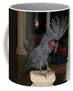 Coffee Mug featuring the photograph Black Palm Cockatoo by Sergey Lukashin