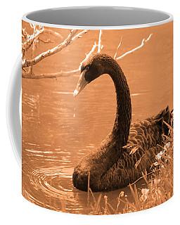 Coffee Mug featuring the photograph Black Swan by Leticia Latocki