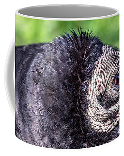 Black Vulture Waiting For Prey Coffee Mug