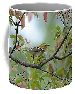 Blackpoll Warbler In The Fall Coffee Mug
