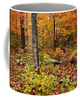 Blazing Forest Coffee Mug