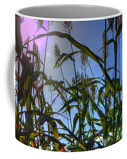 Blazing Rays Coffee Mug