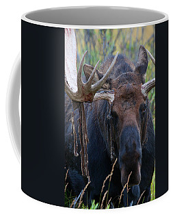 Coffee Mug featuring the photograph Blood In His Eye by Jim Garrison