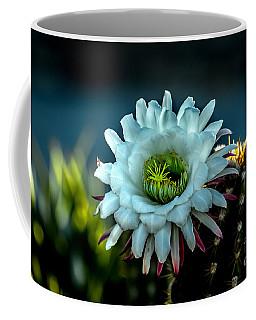 Blooming Argentine Giant Coffee Mug by Robert Bales