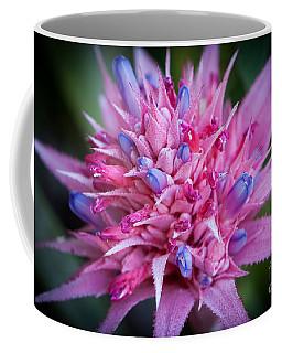 Blooming Bromeliad Coffee Mug