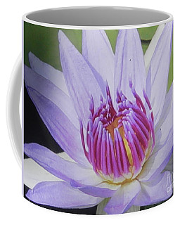 Coffee Mug featuring the photograph Blooming For You by Chrisann Ellis