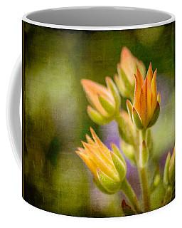 Blooming Succulents I Coffee Mug