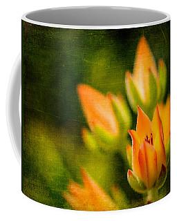 Blooming Succulents IIi Coffee Mug