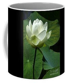 Blooming White Lotus Coffee Mug
