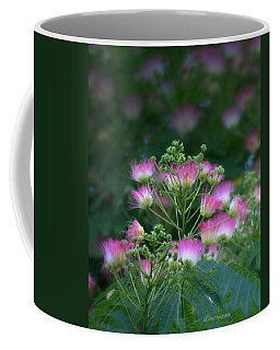 Blooms Of The Mimosa Tree Coffee Mug by Jeanette C Landstrom