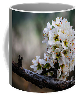 Blossom Gathering Coffee Mug by Terry Garvin