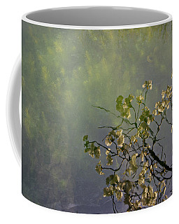 Coffee Mug featuring the photograph Blossom Reflection by Marilyn Wilson