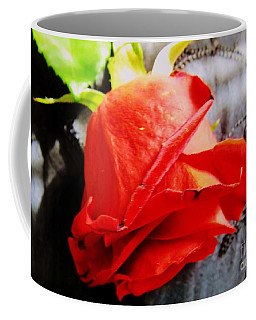 Coffee Mug featuring the photograph Blossoming Red by Robyn King