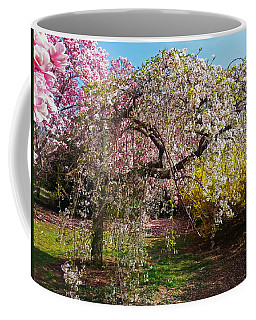 Coffee Mug featuring the photograph Blossoms Potpourri II by Emmy Marie Vickers