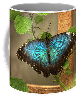 Blue And Black Butterfly Coffee Mug