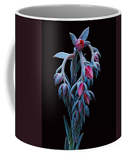 Blue And Pink Succulent Coffee Mug