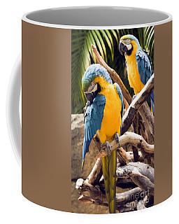 Blue And Yellow Macaw Pair Coffee Mug