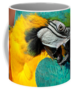 Blue And Yellow Macaw  Coffee Mug by Venetia Featherstone-Witty