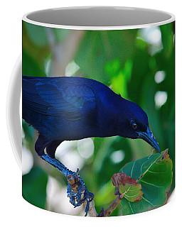 Blue-black Black Bird Coffee Mug