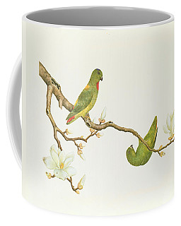 Blue Crowned Parakeet Hannging On A Magnolia Branch Coffee Mug
