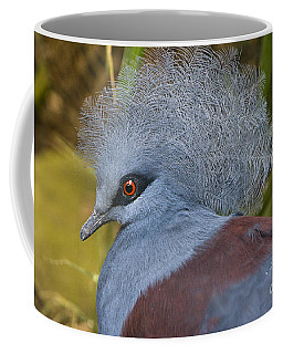 Coffee Mug featuring the photograph Blue-crowned Pigeon by David Millenheft