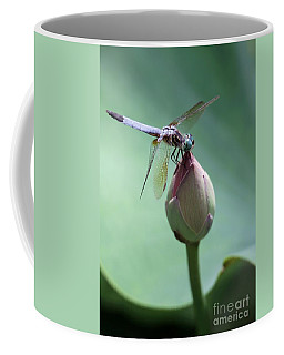 Blue Dragonflies Love Lotus Buds Coffee Mug