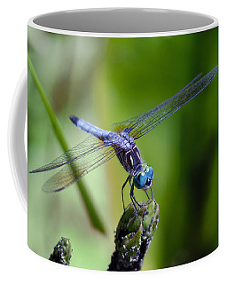 Blue Dragonfly Coffee Mug